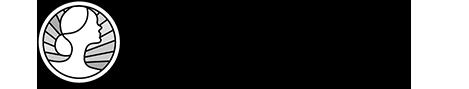 profizon logo